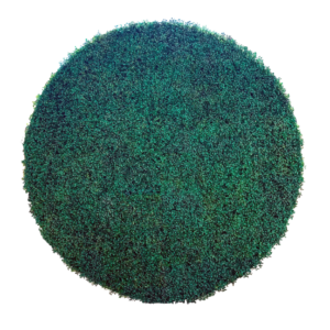 Green Hedge Party Circle Backdrop Hire
